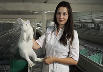 Чемпионка мира решила поставить рекорд по разведению кроликов
