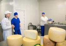 В Башкирии вернут на рынок сельского труда рабочие руки вахтовиков-северян