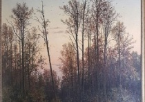 Сотрудники музея в Подмосковье обнаружили новое название картины Шишкина